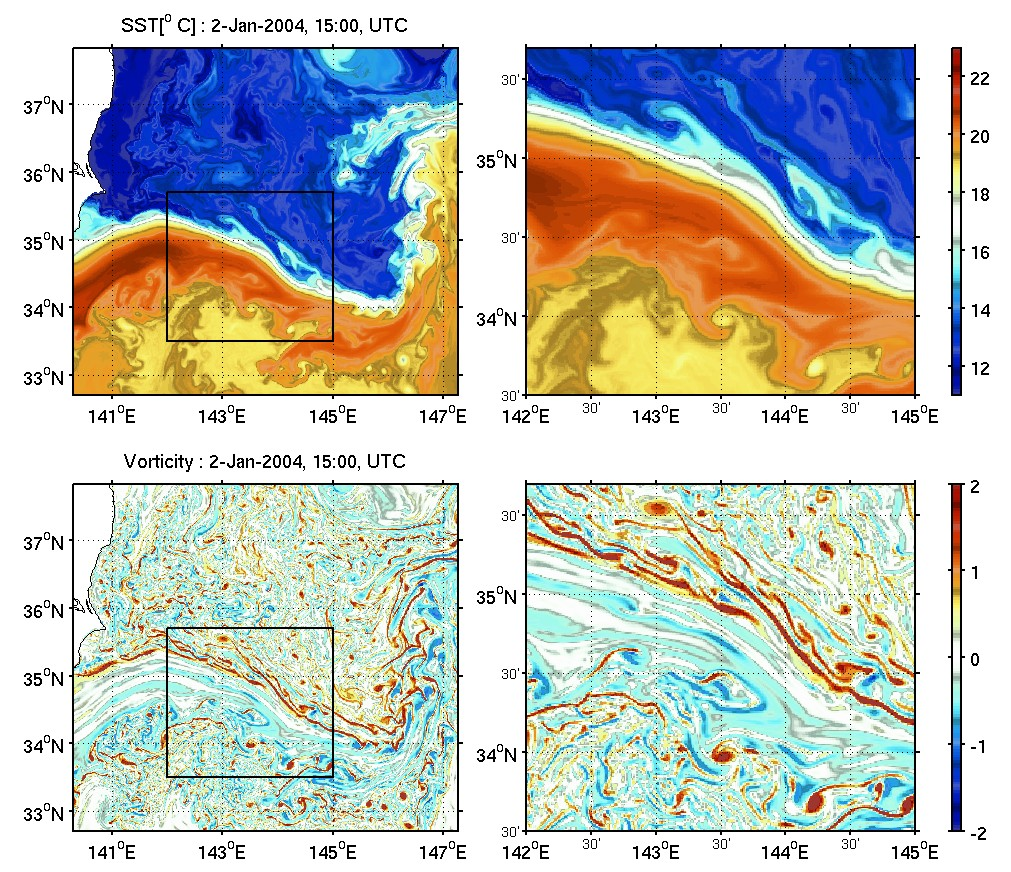 surface vorticity in the Kuroshio Extention